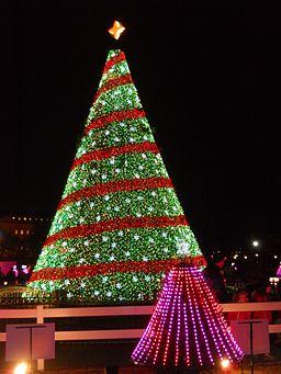 2014_National_Christmas_Tree